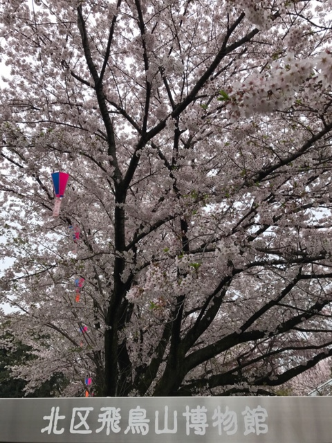 東京散歩、王子・飛鳥山: エイスケ・ブログ